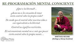 reprogramacion mental - YouTube