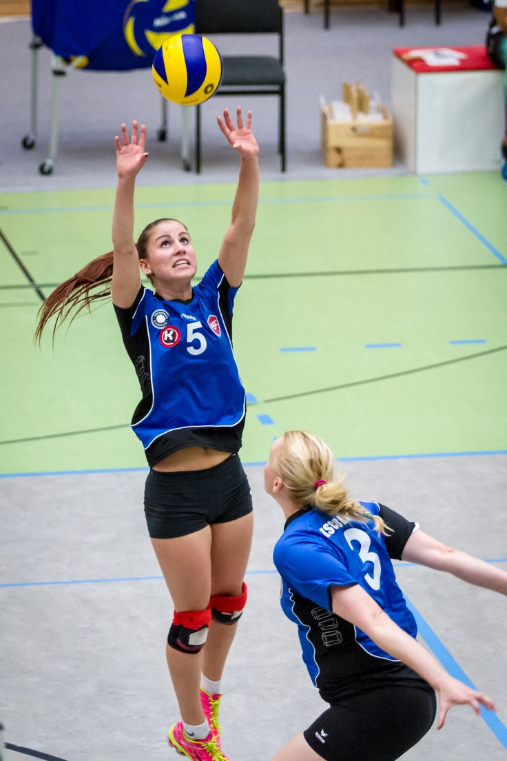 volleyball 2 bundesliga nord