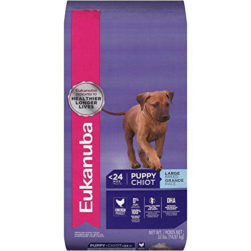 Eukanuba Large Breed Puppy Food Review