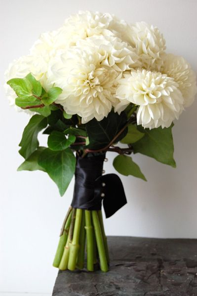 white dahlia bouquet - simple, beautiful, but I would want to add some greenery ... This might be best if my dress ends up being bright red or burgundy!