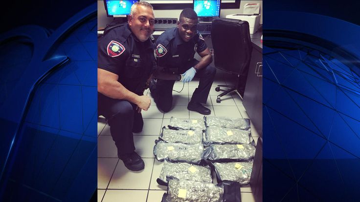 Pembroke Pines Police find 10 pounds of WEED