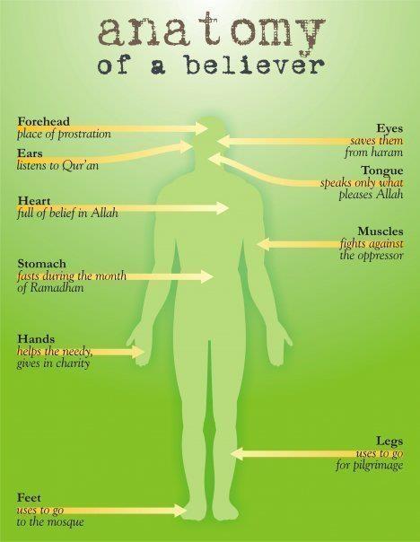 Amputee Hookup Devotee Meaning In Urdu