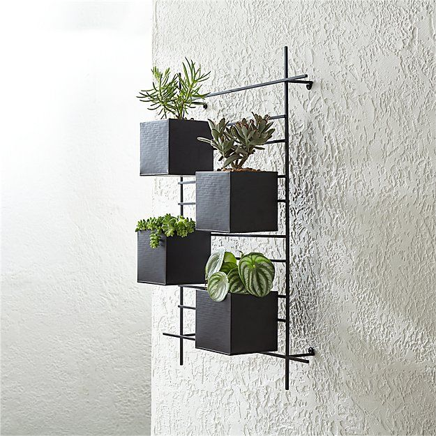 4 Box Wall Mounted Planter Reviews Crate And Barrel Wall Mounted Planters Wall Planters Outdoor Metal Wall Planters