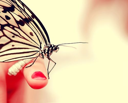 Nail + Butterfly #cute #butterfly