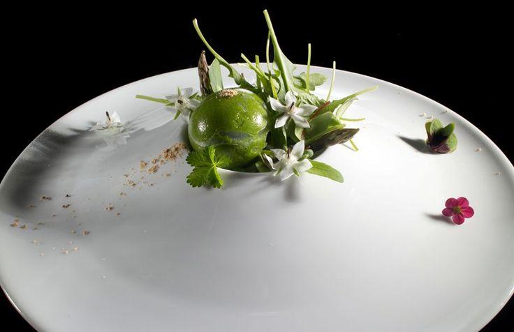 Photogallery - L' Estetica del Cibo - Food aesthetic   Aprile - Giugno 2015, Reporter Gourmet
