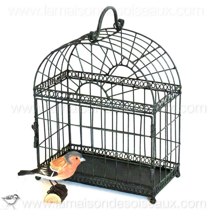 88 best old bird cage cages oiseaux anciennes images on pinterest bird cages birdcages and. Black Bedroom Furniture Sets. Home Design Ideas