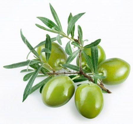 Succo di olive, rimedio naturale contro la Psoriasi