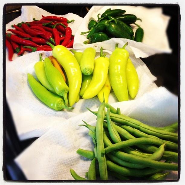 Homegrown organic veggies