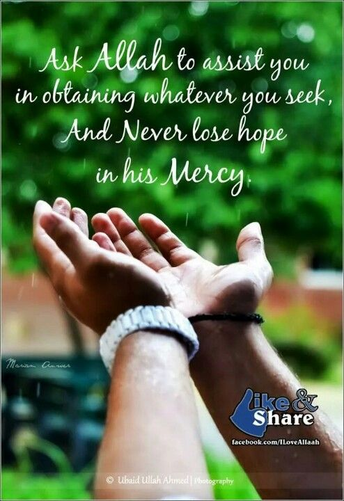 Never lose hope in the mercy of Allah.