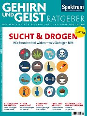 Heftcover Gehirn&Geist Ratgeber 1/2015<br /> Sucht & Drogen