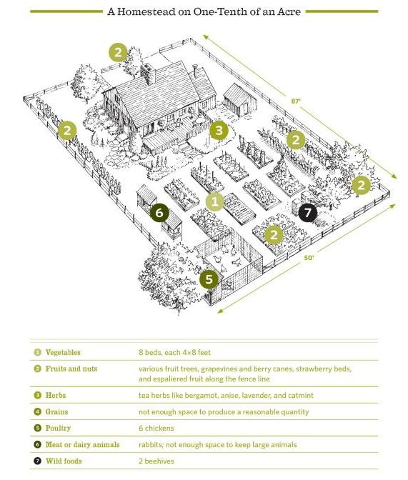 1 10 of an acre layout from the backyard homestead home Small farm plans layout