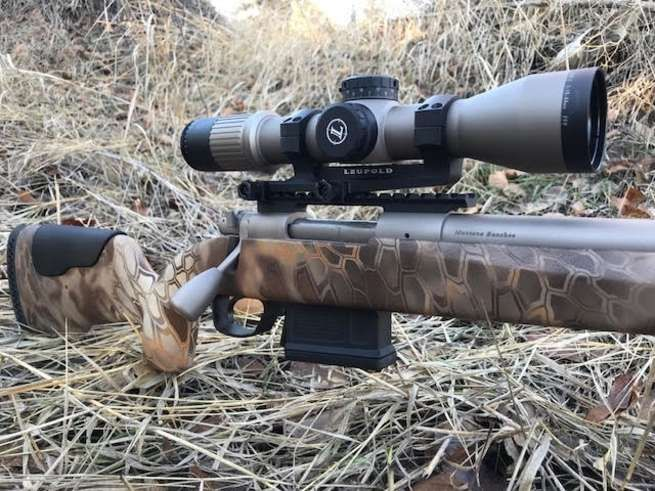 Coyote Hunting Made Easy