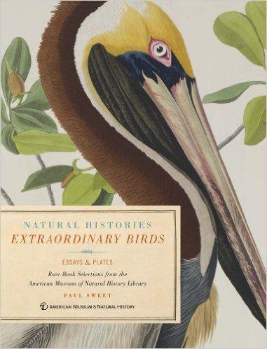Extraordinary Birds: Amazon.co.uk: Paul Sweet: 9781454906599: Books