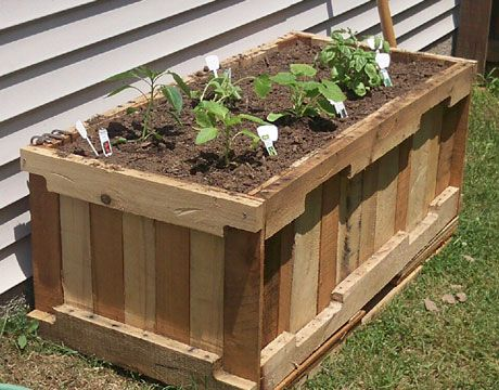 pallet container garden; site slideshow also has listings of container-friendly flowers and veggies