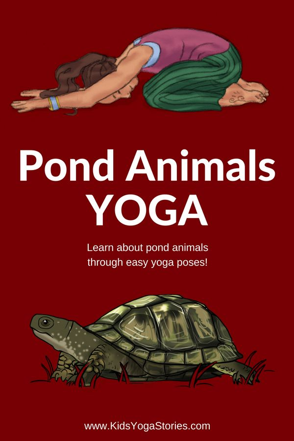 Pond Animals for Kids: Learn about pond animals for kids through pond animal yoga poses and books!   Kids Yoga Stories