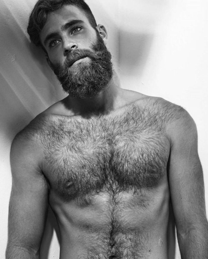 Gay free hairy