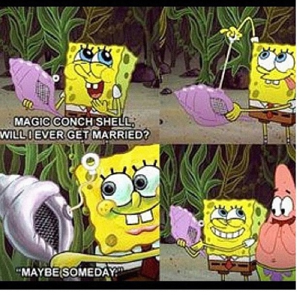 b2a86aee3b899832353591421f6695b2 conch shells maybe someday 30 best the dankest memes images on pinterest funny images