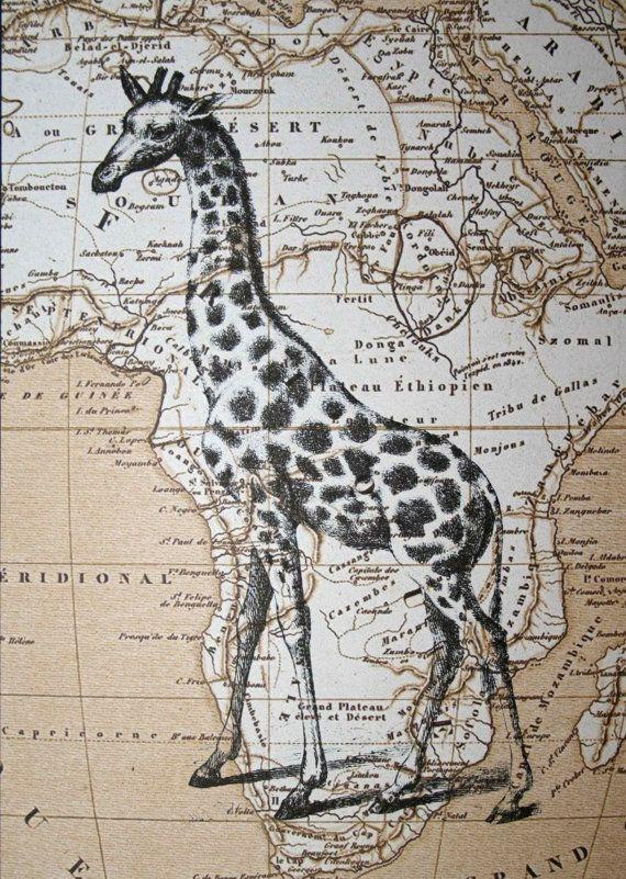 Giraffe Print on Map of Africa  5 x 7 Giraffe Map Print by CrowBiz, $15.00
