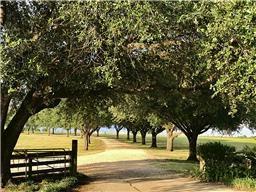 50 acres on FM 362, Navasota TX