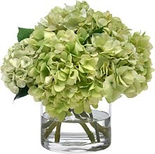 Green Hydrangea Bouquet in Glass Cylinder