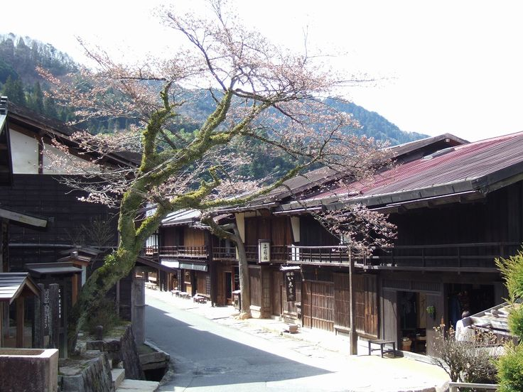 The Five Japanese Streets That People of Japan Most Want to Visit ~ Will go to all of these one day!!