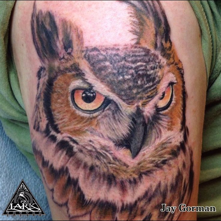 Tattoo by Jay Gorman.  To see more of Jay's work, check out his online portfolio: http://www.larktattoo.com/long-island-team-homepage/jay/  Tattoo, owl, color tattoo, realistic tattoo, animal tattoo, bird tattoo, lark tattoo