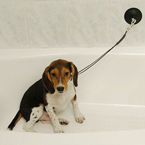 This Professional Quality restraint will keep your dog in the tub for bathing. Helps to contain the mess. No Tools Necessary! The 4' industrial rubber suction cup attaches easily to any smooth bathtub...