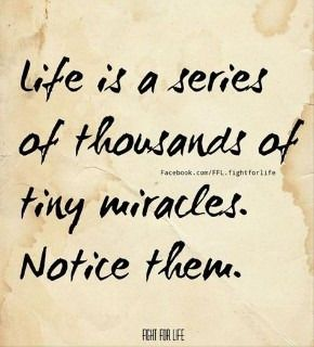 Life is a sieres of tiny miracles. Notice them.  ENJOY THE LITTLE THINGS