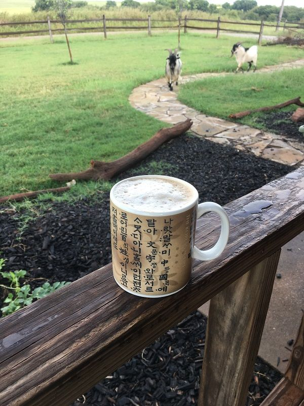 Farming Phyllis is pretty Picky about her coffee. Learn about her not-so-secret coffee recipe that rivals your $5 Starbucks latte!
