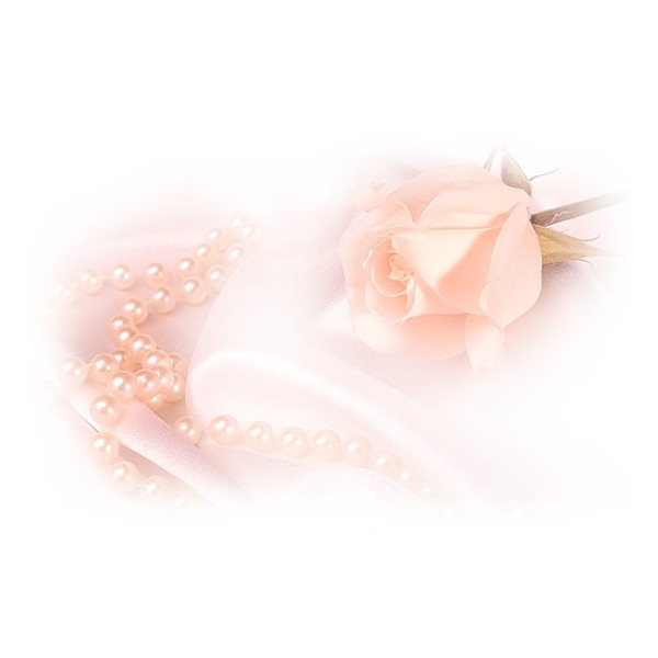 tube rose - Page 7 ❤ liked on Polyvore: Tube Rose