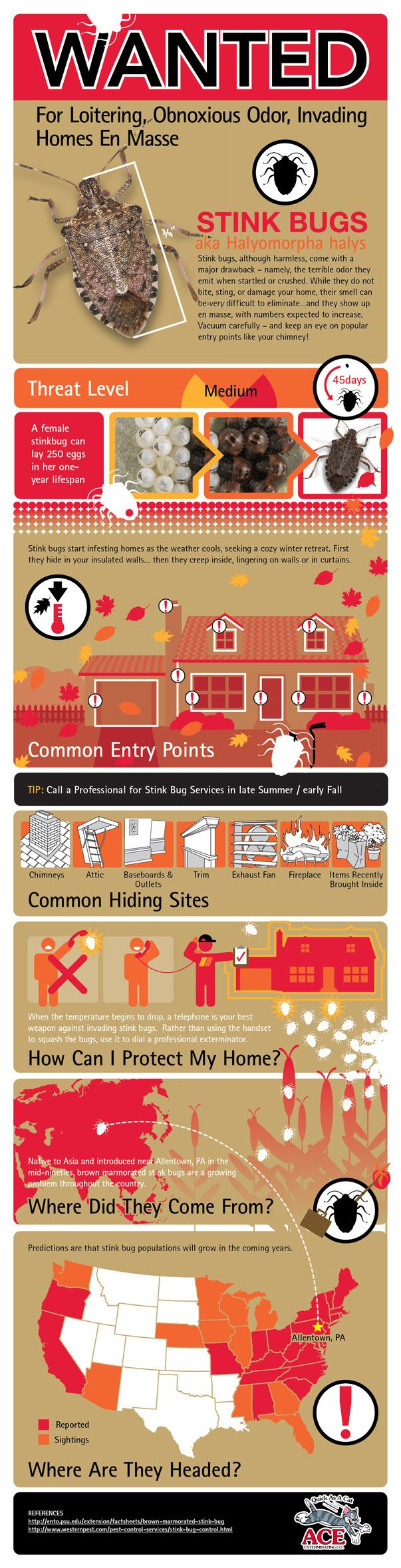 44 Best Gobig Additional Home Inspections Infographics