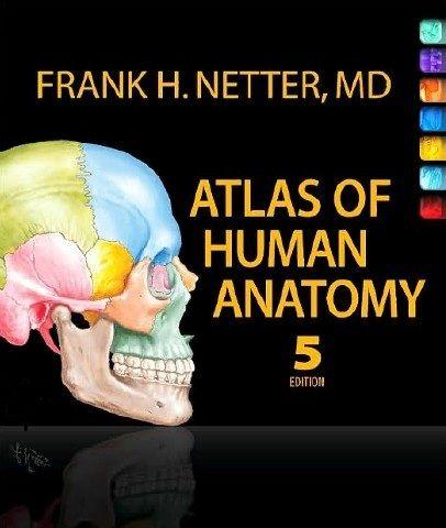 Download netter atlas of human anatomy pdf