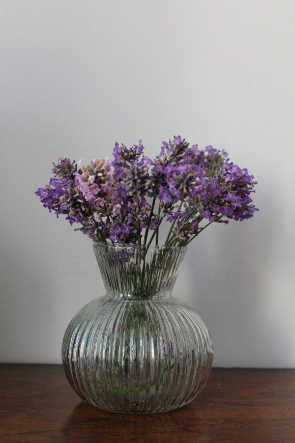 This charming clear glass bulb vase looks simple, elegant and beautiful with hyacinths or baby daffodils but will also make a very pretty vase for cut flowers. £9.95