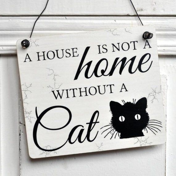 Wooden Sign A House Is Not A Home Without A Cat In 2020 With