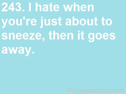 Mostly because that sneaky ass sneeze WILL be back later.  Just wait.Aw Feelings, Hate, Laugh, Awesome, Worst Feelings, Funny, 243 Things, So True, Come Back