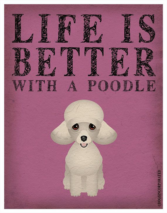 Life is Better with a Poodle Art Print 11x14  by DogsIncorporated, $29.00
