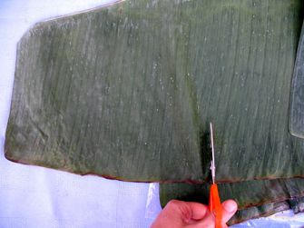 How to Make Banana Leaf Boats for Cooking or Serving: Cut a Rectangular Piece of Banana Leaf.