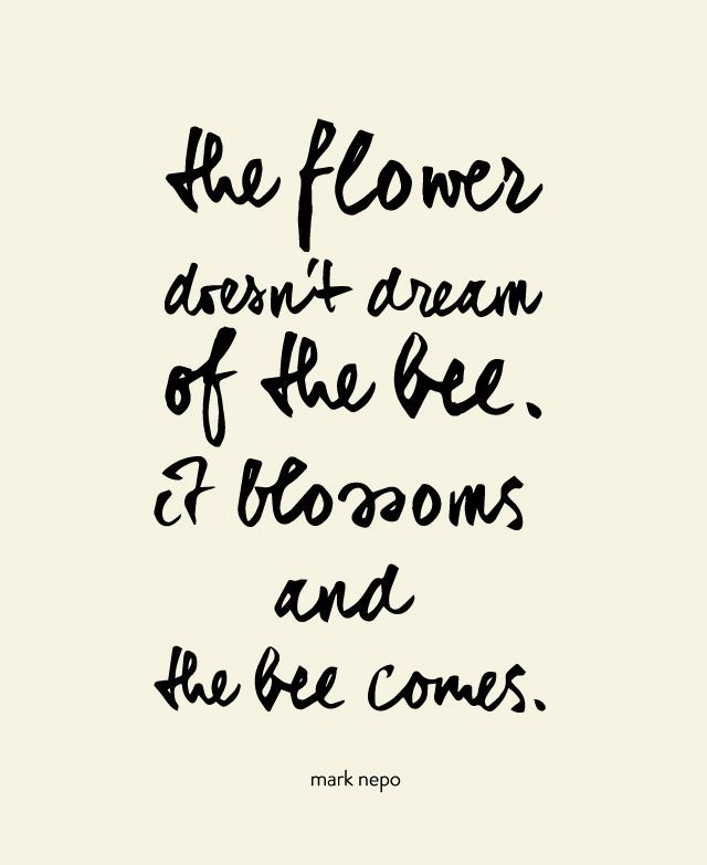 The flower doesn't dream of the bee, it blossoms and the bee comes. // quote