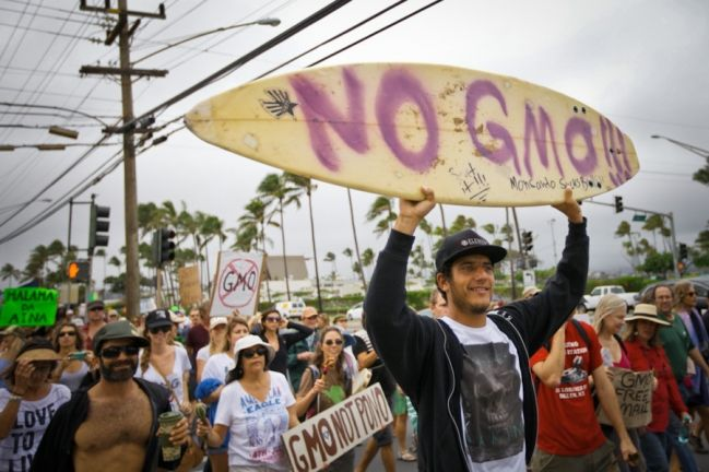 Mayor of Hawaii's Big Island signs anti-GMO bill into law - Buzz.NaturalNews.com       Maybe I should move to Hawaii!! ;)