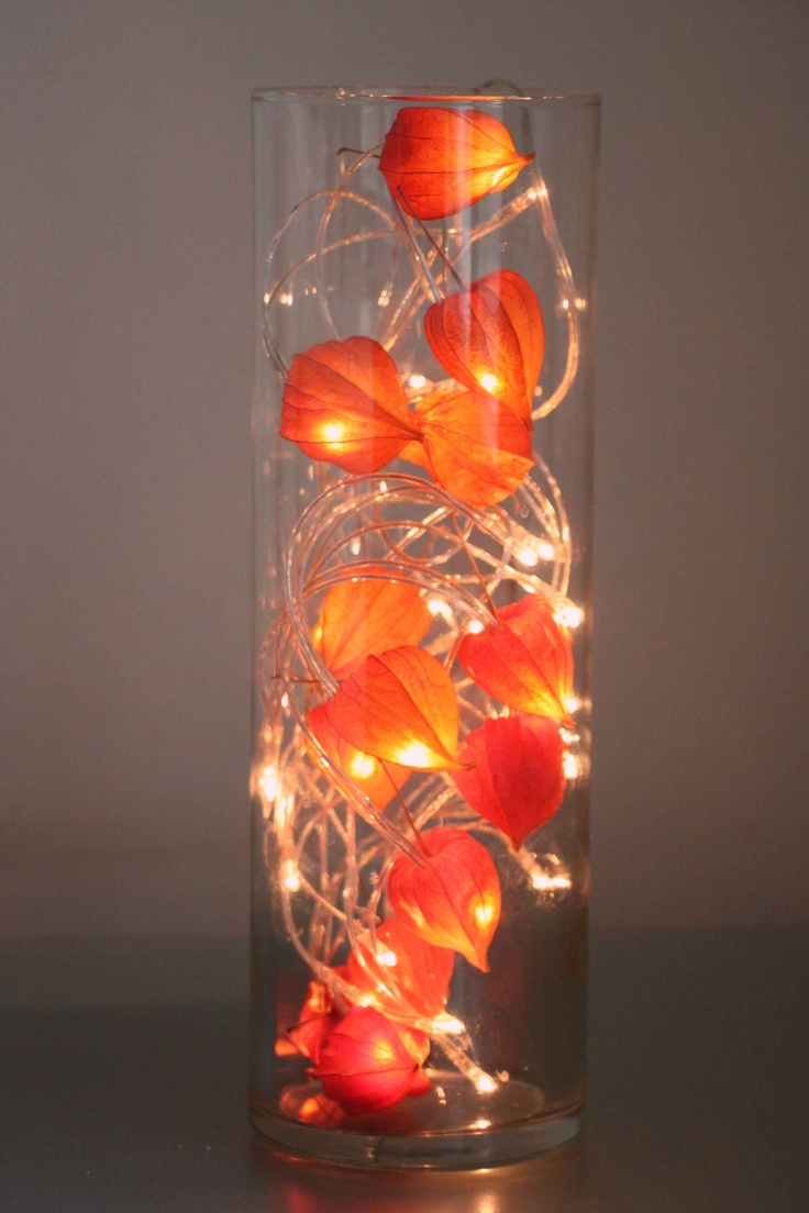 DIY lamp with dried chinese lanters