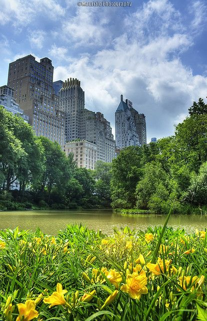 NYC. Central Park in Spring
