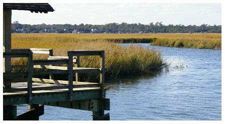 The Southern C(ity) Guide | Charleston. PPHG COO Jennifer Goldman loves to spend a day with her family at James Island County Park for the acres of pristine Lowcountry nature activities and an awesome waterpark.