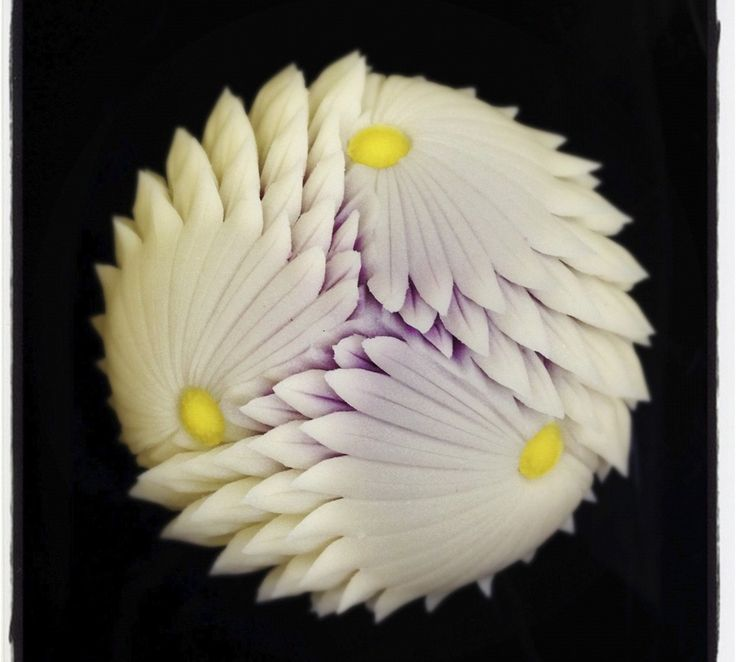 """Chrysanthemum scissors"" cutting craft practitioners"