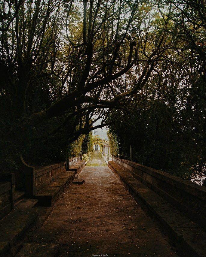 Lluvia y muerte es un día tan negro que hasta el cielo aplasta el suelo que solo y triste estoy señor con mi viejo amigo el miedo. Y mientras el mundo se esconde yo me quedo con él y sus caricias llorando como solo puede llorar un hombre en este jardín de las delicias. el jardín de las delicias Los suaves  #tropoUrbanita #garden #palace #brejoeira #shadow #light #tree #Tunnel #portugal #naturephotography #photoNature #nature #travel #trip #travelgram #instatrip #travelwithkids #vsco…