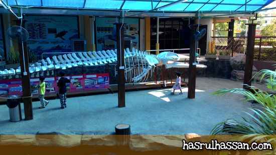Destinasi Bajet - Akuarium Tunku Abdul Rahman Penang