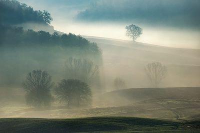 Toscana Region Photograllery - Giovanni Piccinini Research | Explore