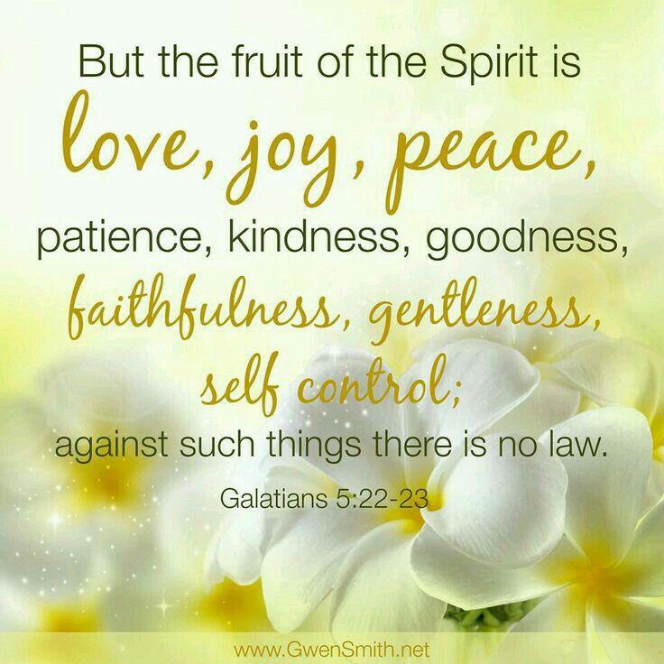 Mais le fruit de l'Esprit, c'est l'amour, la joie, la paix, la patience, la bonté, la bénignité, la fidélité, la douceur, la tempérance; la loi n'est pas contre ces choses. Galates 5:22-23