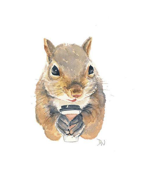 latte squirrel