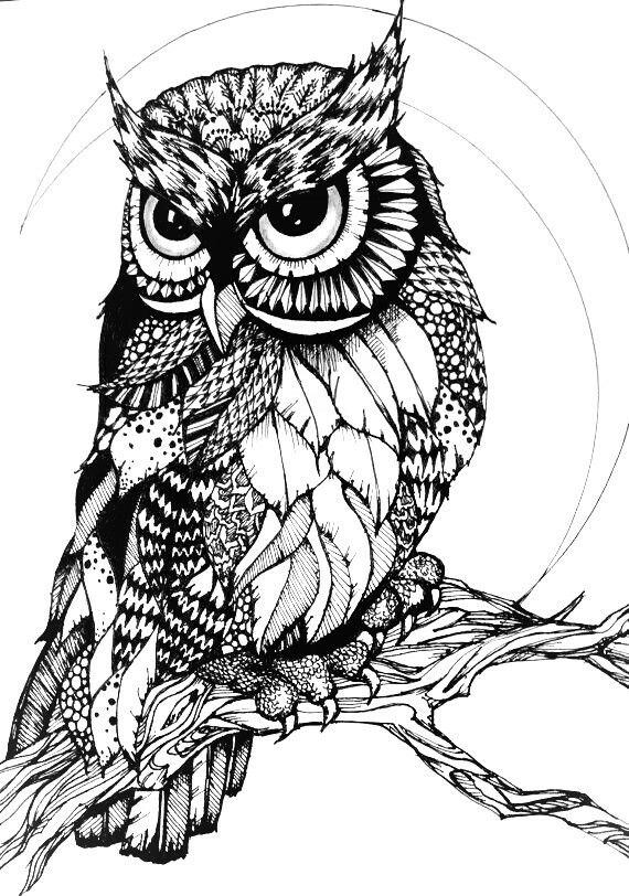 zentangle owl coloring pages - photo#19