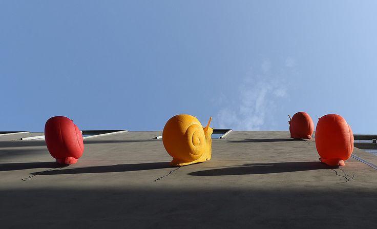 Cracking Art - Le lumache sul centro Happio: ecco il significato...